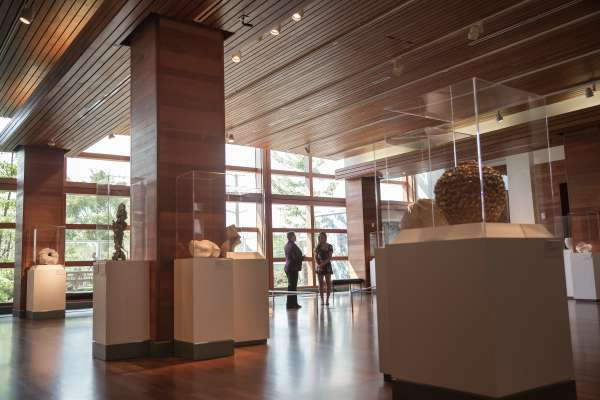 Inside the Harn Museum